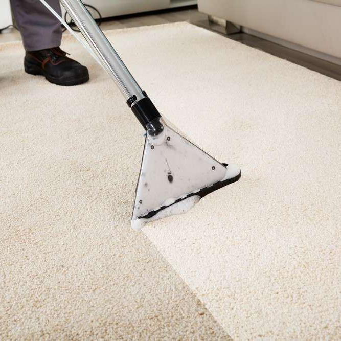 Carpet Cleaning London My Home