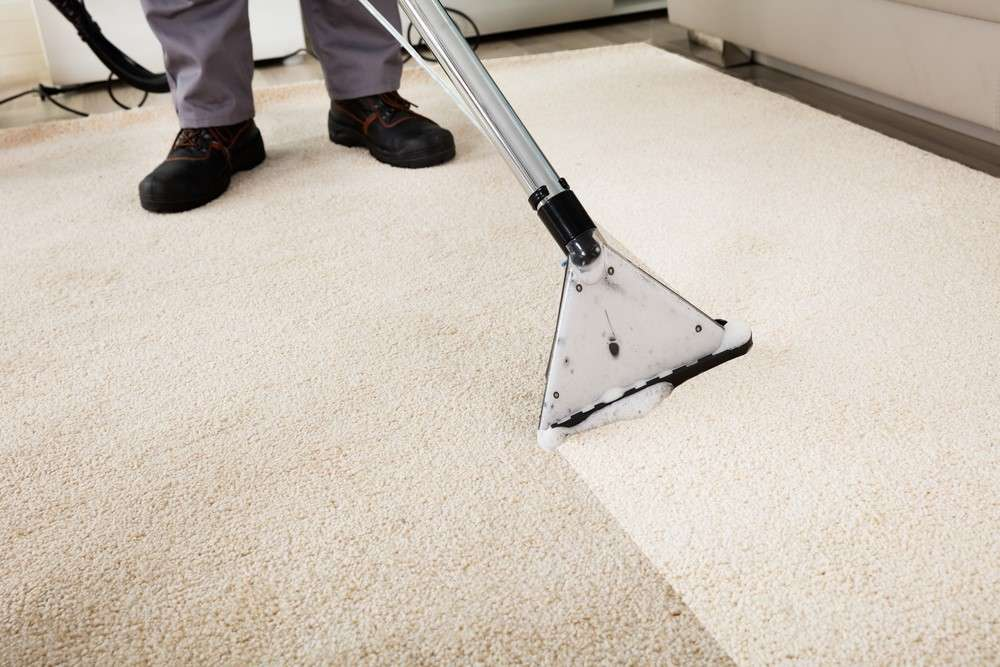 How Often Should You Get Carpet Cleaning Services